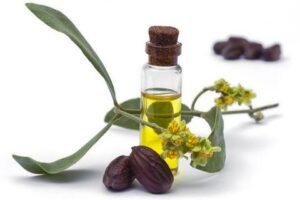 ¡Beneficios del aceite de Jojoba!